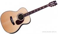 CRAFTER TM-045 N + Чехол - Акустическая гитара