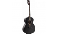 FLIGHT HPLD-500 EBONY - Акустическая гитара