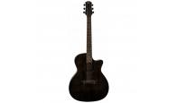 FLIGHT GA-150 BK - Акустическая гитара